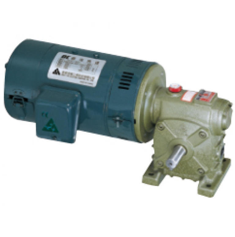 DC motor with worm gear reducer (DW type)